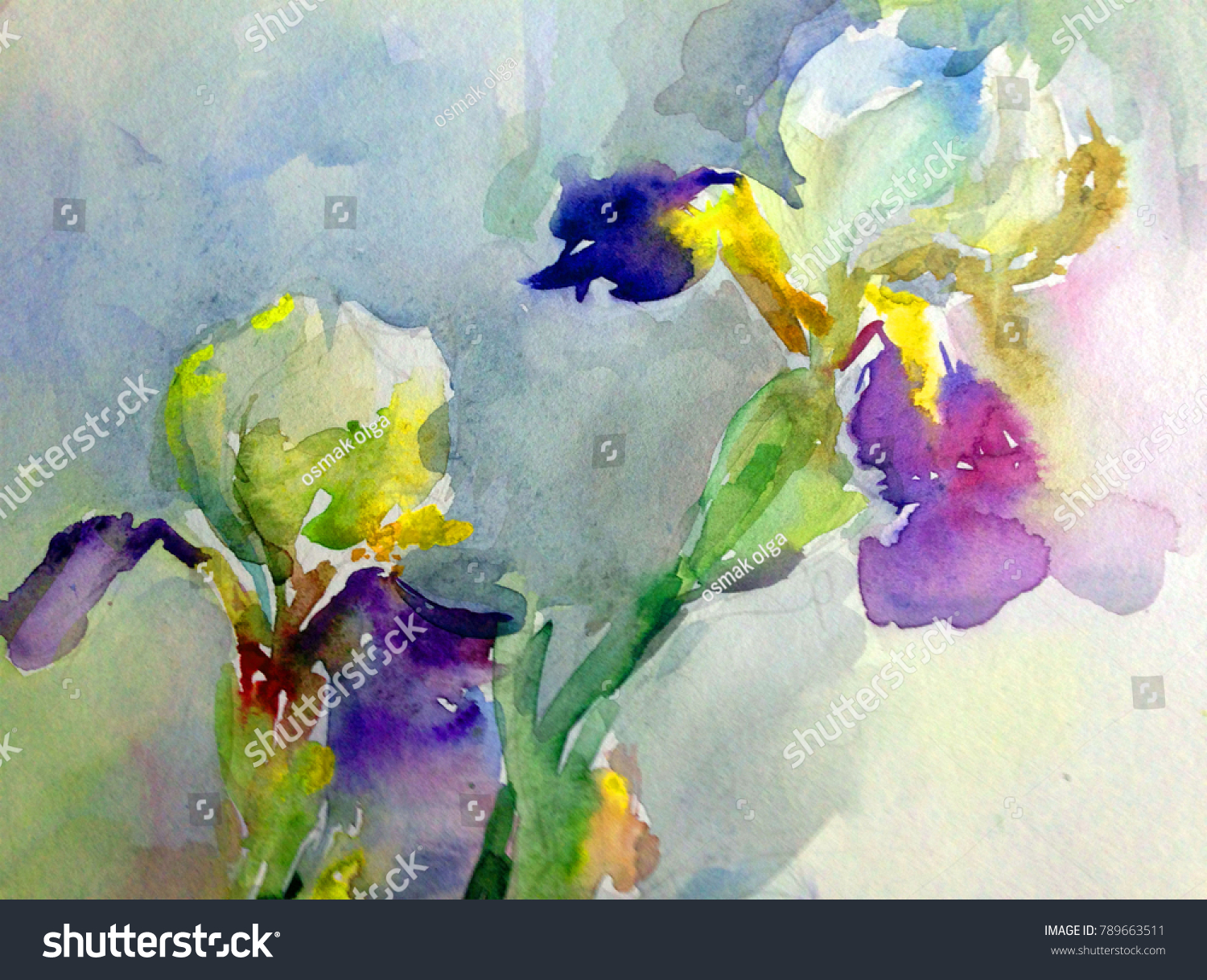 Watercolor Art Background Floral Exotic Iris Flower Painting Bright