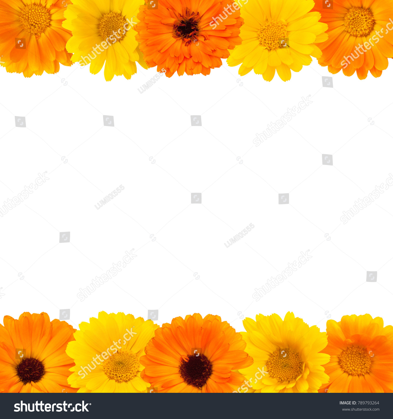 Beautiful Floral Border Floral Arrangement Of Yellow And Orange