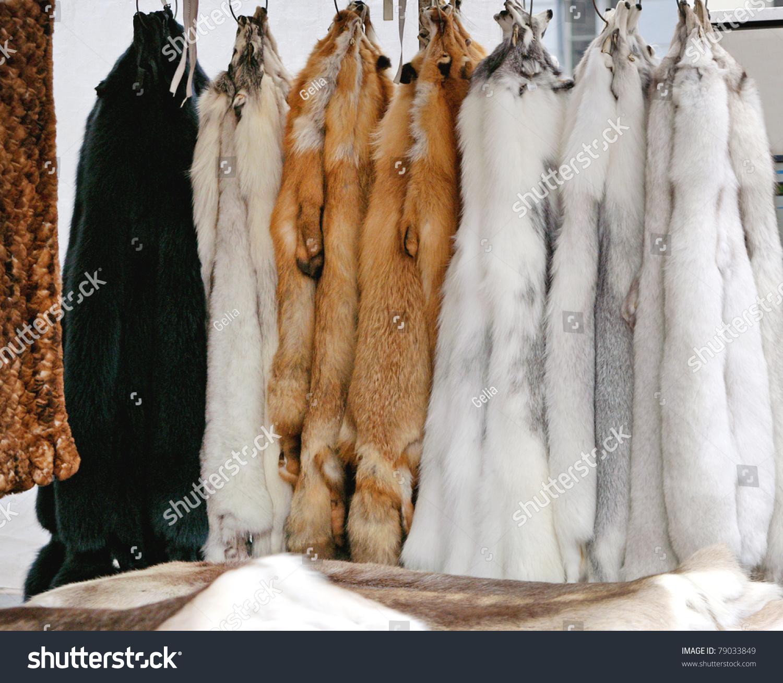 Как выделать шкуру лисы в домашних условиях