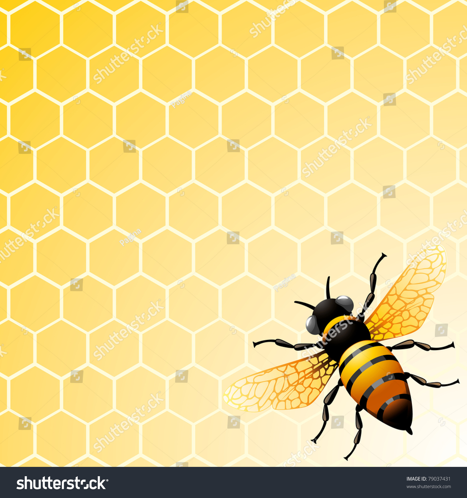Bee On Honeycomb Background You Design Stock Vector