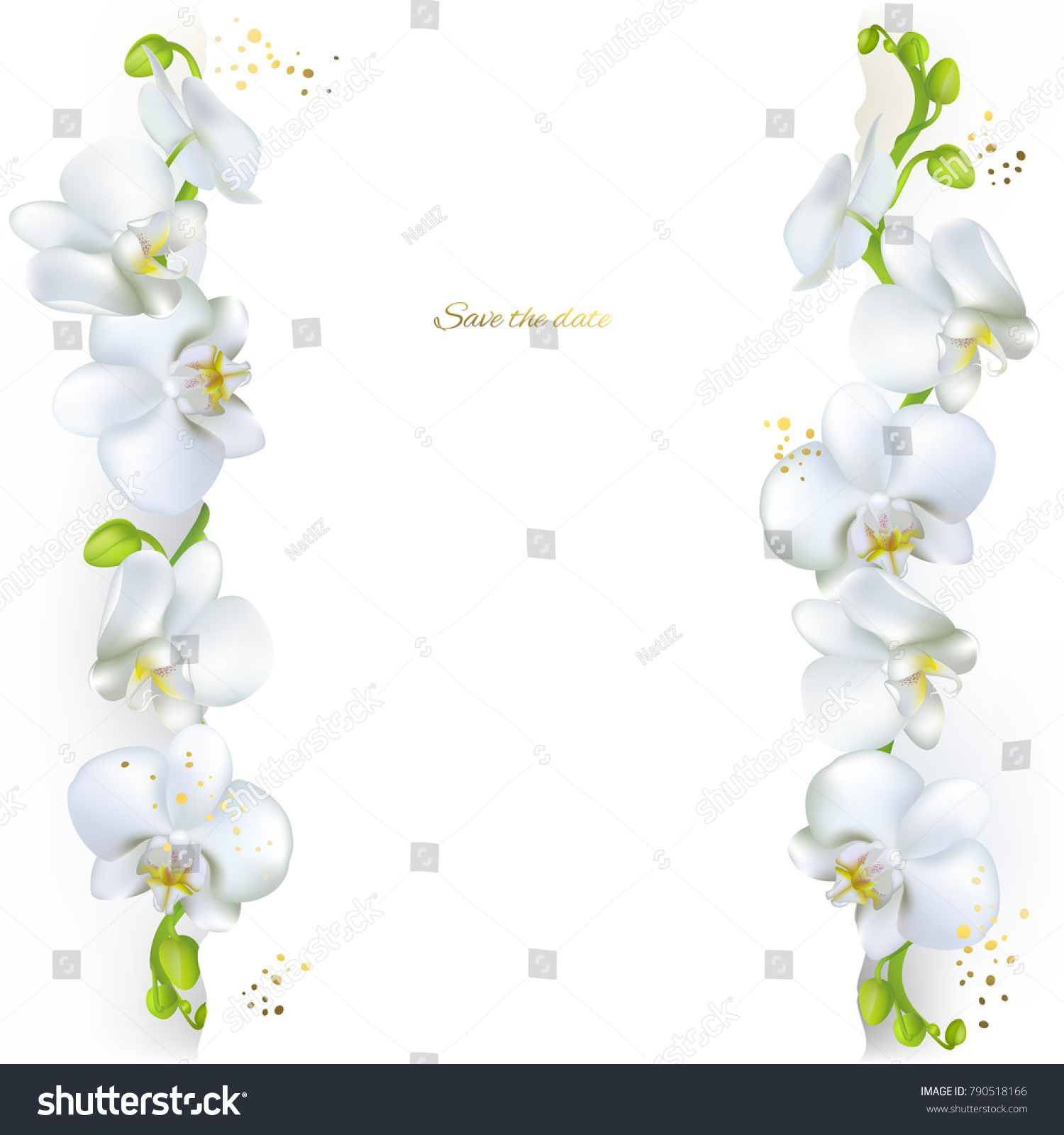 Orchids White Flowers Tropical Plants Floral Stock Vector 790518166