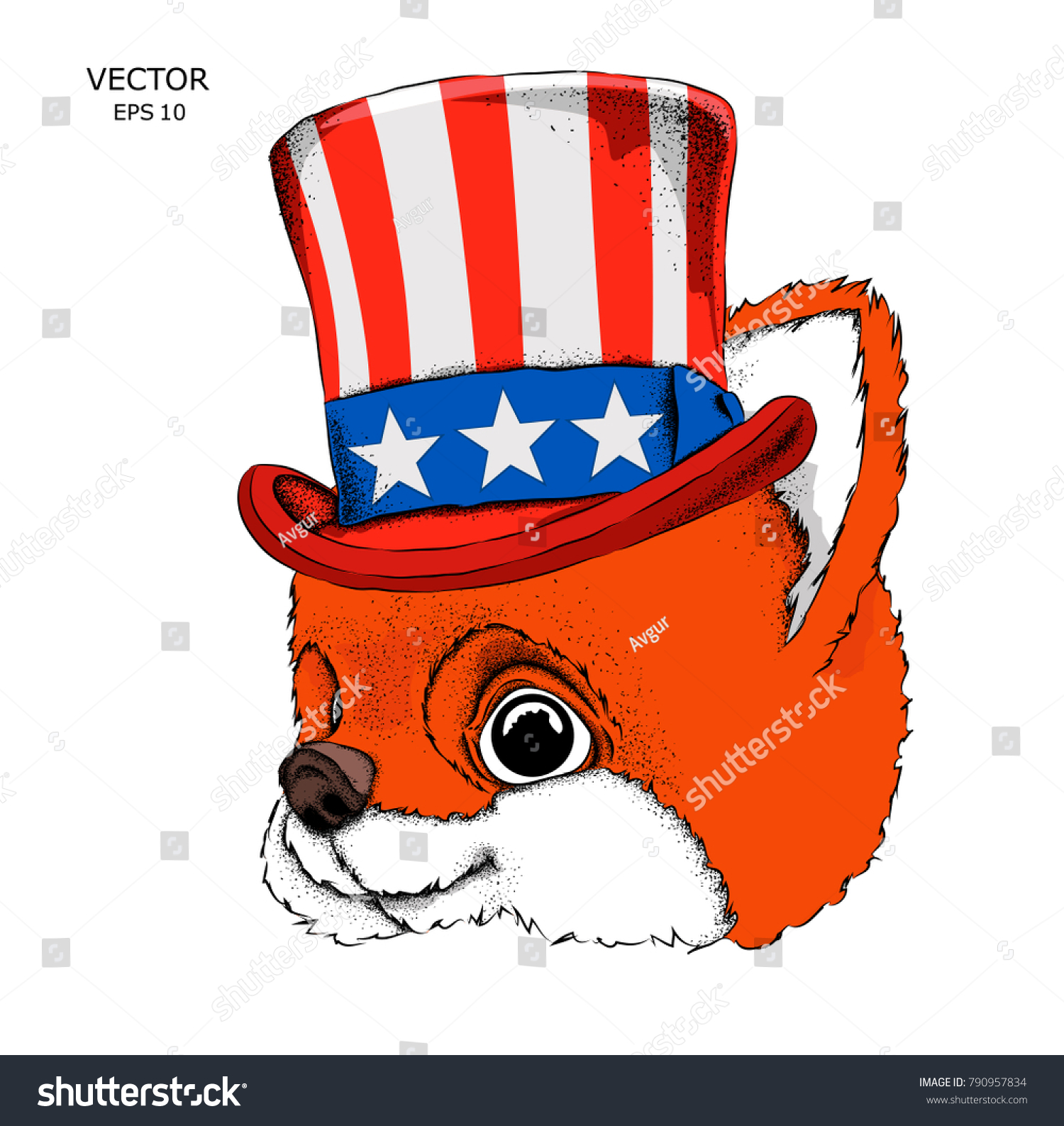 Fox Old American Hat Flag National Stock Vector Royalty Free