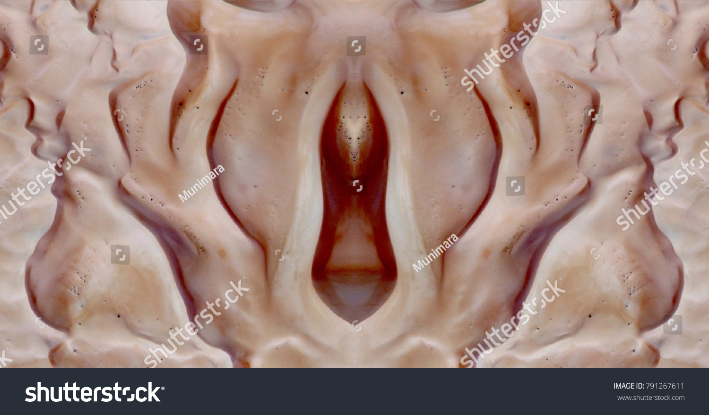 Erotic clitoris vulva vagina