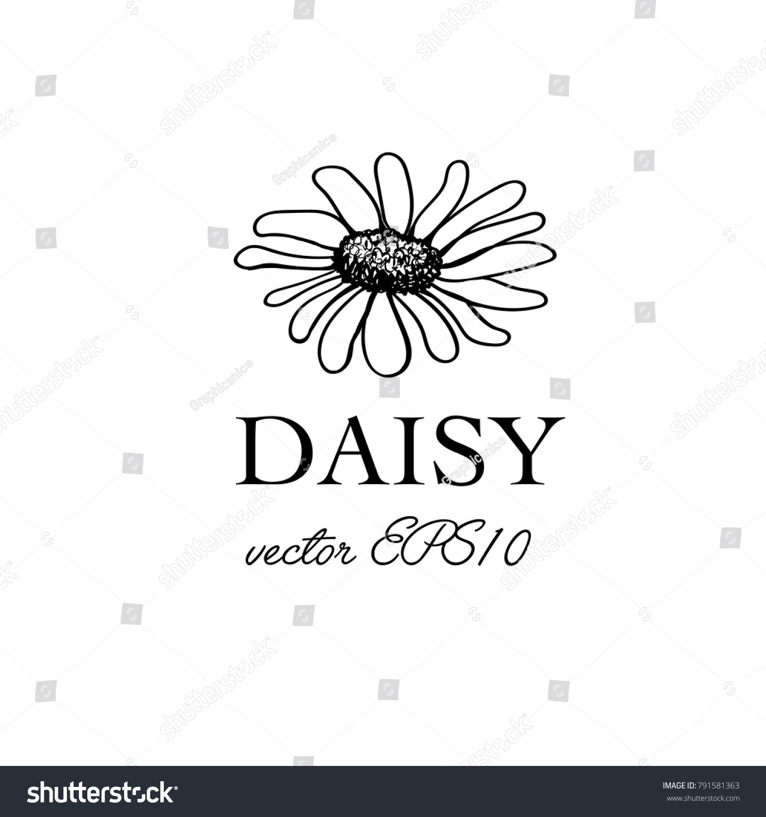 simple hand drawn daisy flower template stock vector royalty free