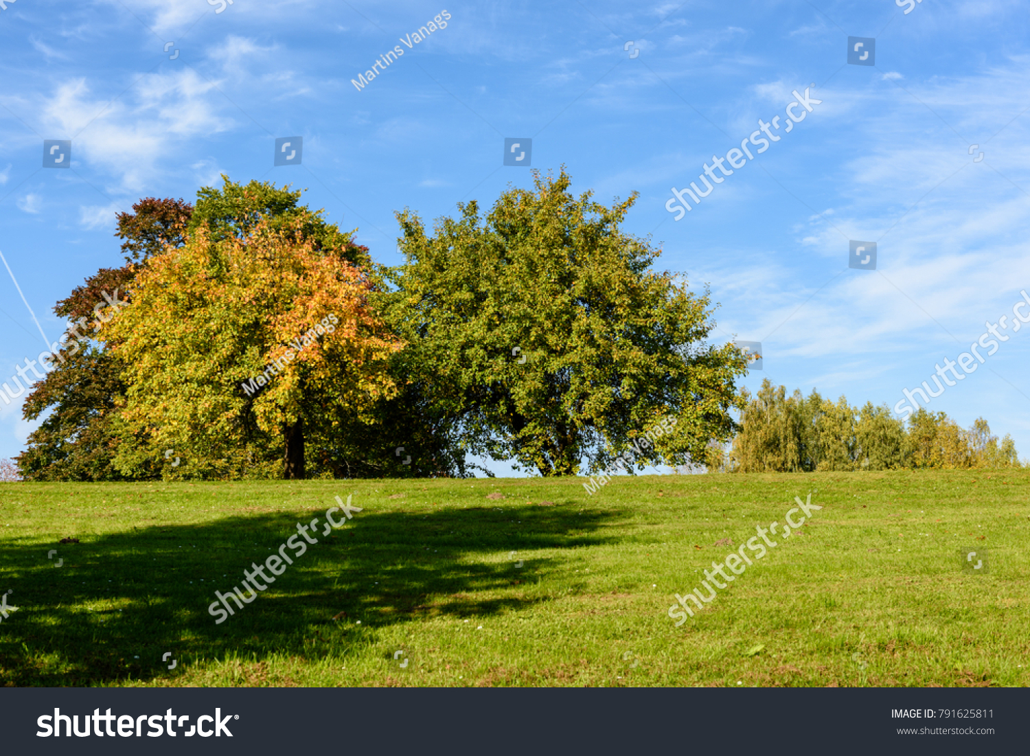 End of summer in the forest. The month of August.Nature in the ...