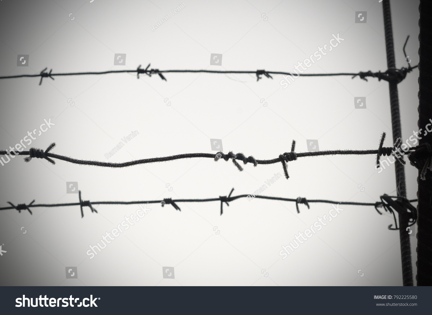 Barbed Wire Symbol Unfreedom Deprivation Concentration Stock Photo ...