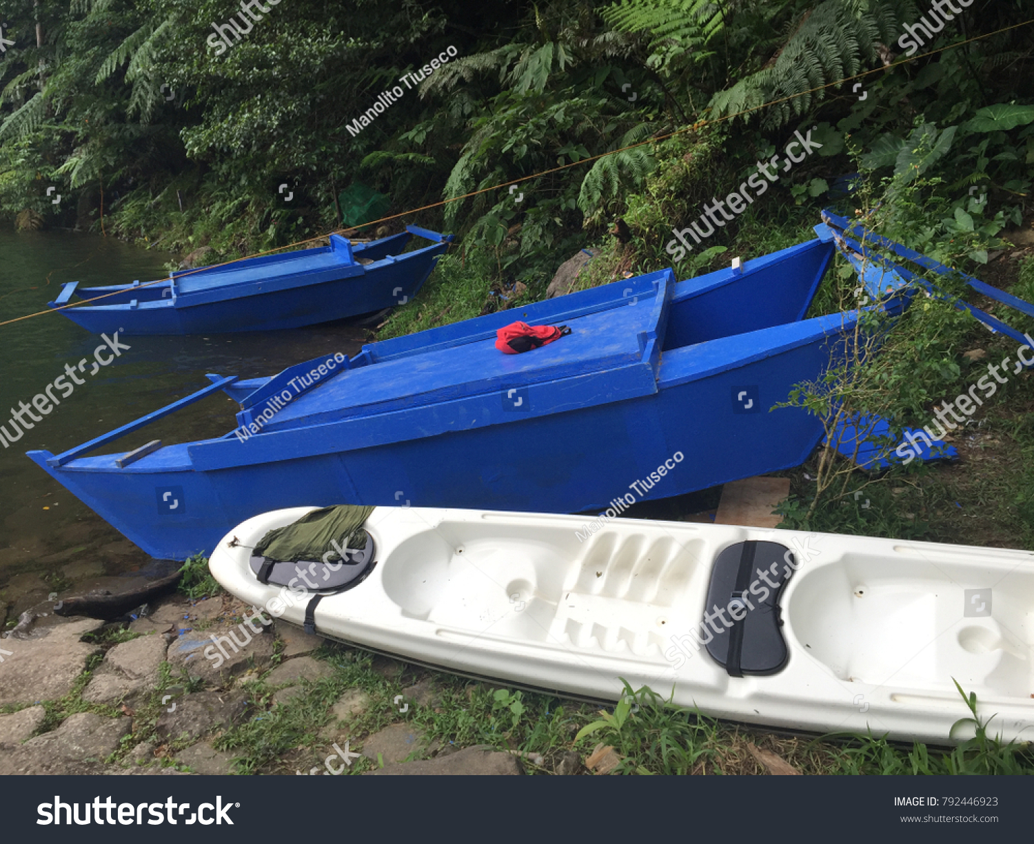 Sea squirt boats