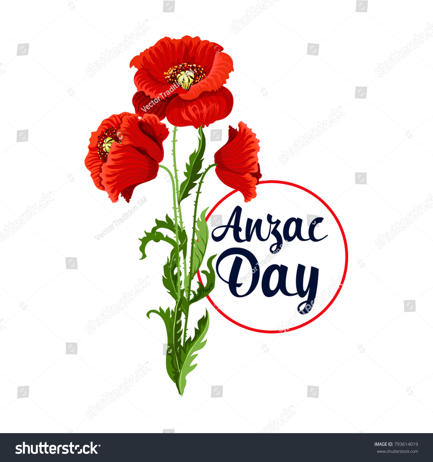 Anzac day poppy bunch icon war stock vector 793614019 shutterstock anzac day poppy bunch icon for war commemorative day of australia and new zealand soldiers and biocorpaavc Images