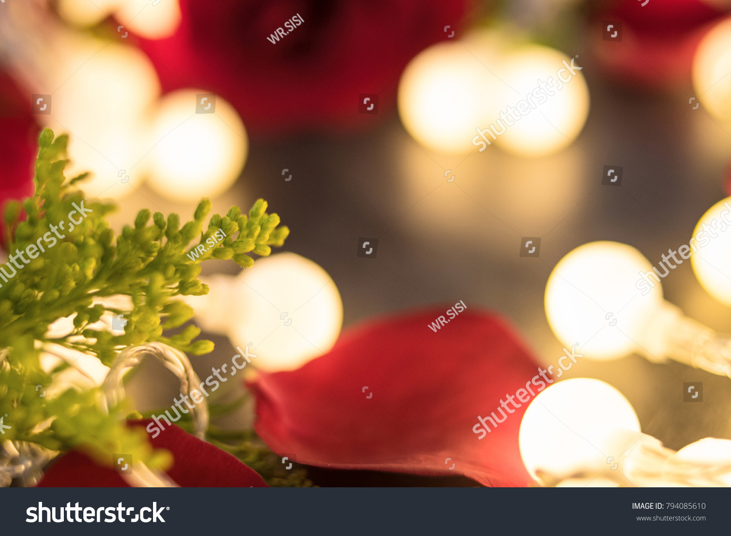 Fantasy Lights Rose Aesthetic Romantic Valentines Stock Photo Royalty Free 794085610