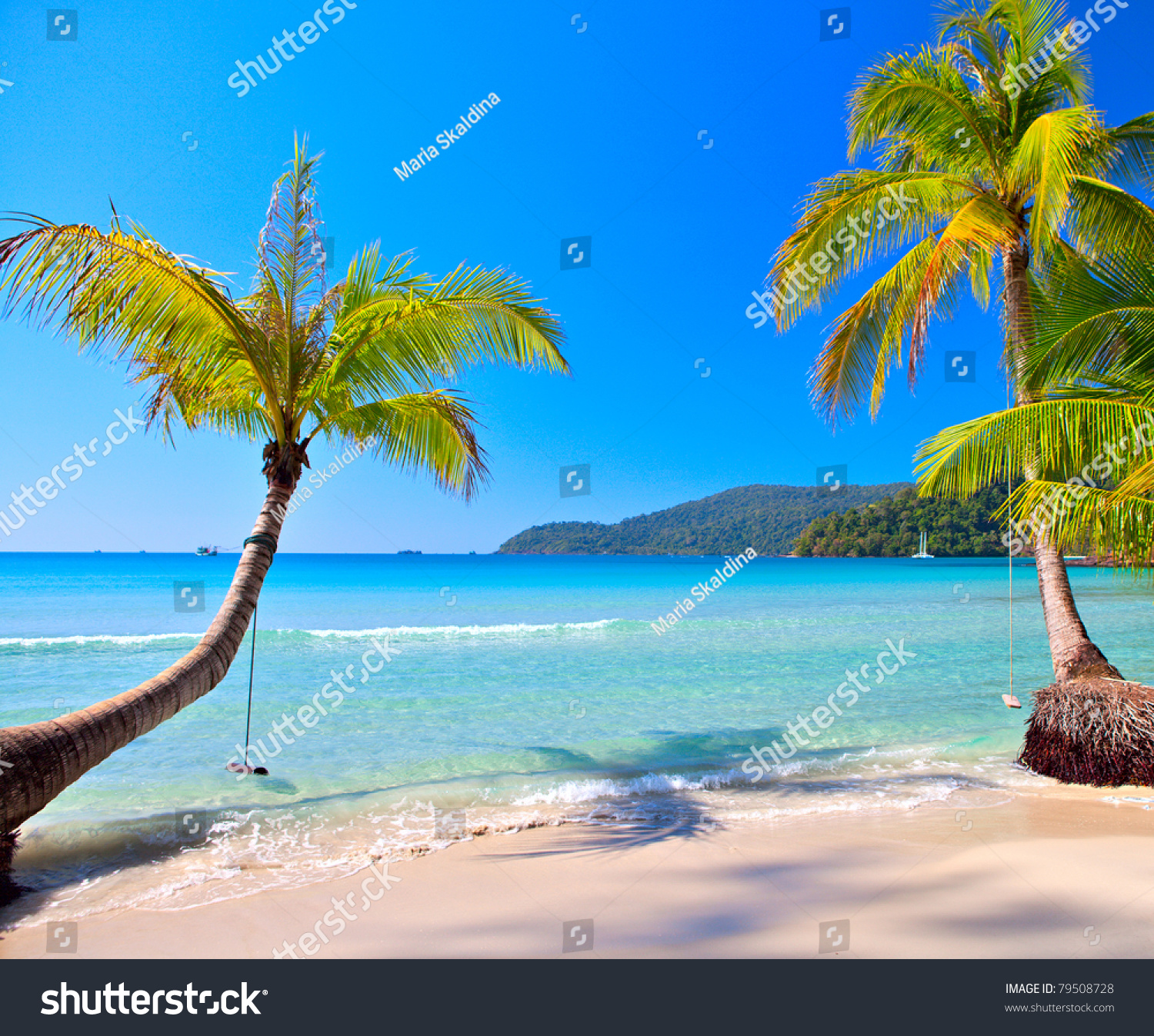 Exotic Beach: Sunny Tropical Beach Under Blue Sky Stock Photo 79508728