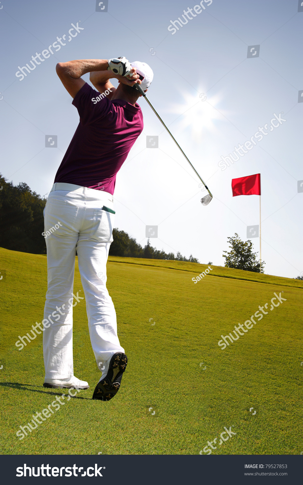 Man Playing Golf Stock Photo 79527853 Shutterstock