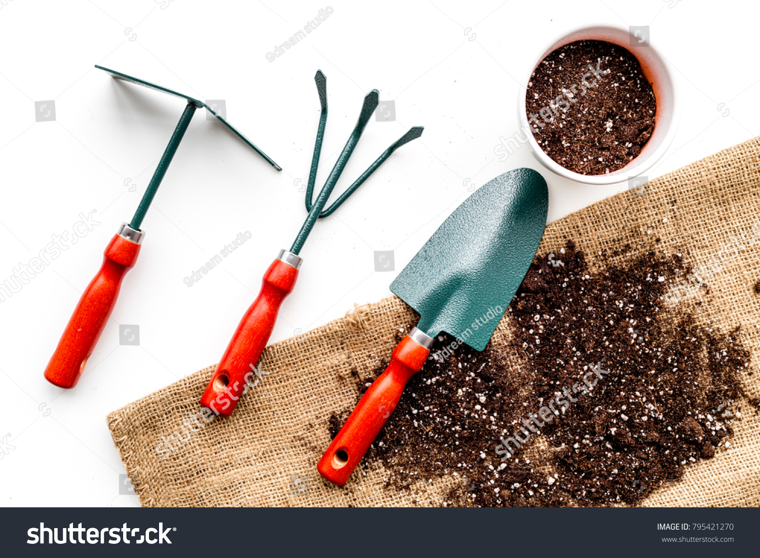 Plant Flowers Garden Tools Spade Fork Stock Photo Edit Now