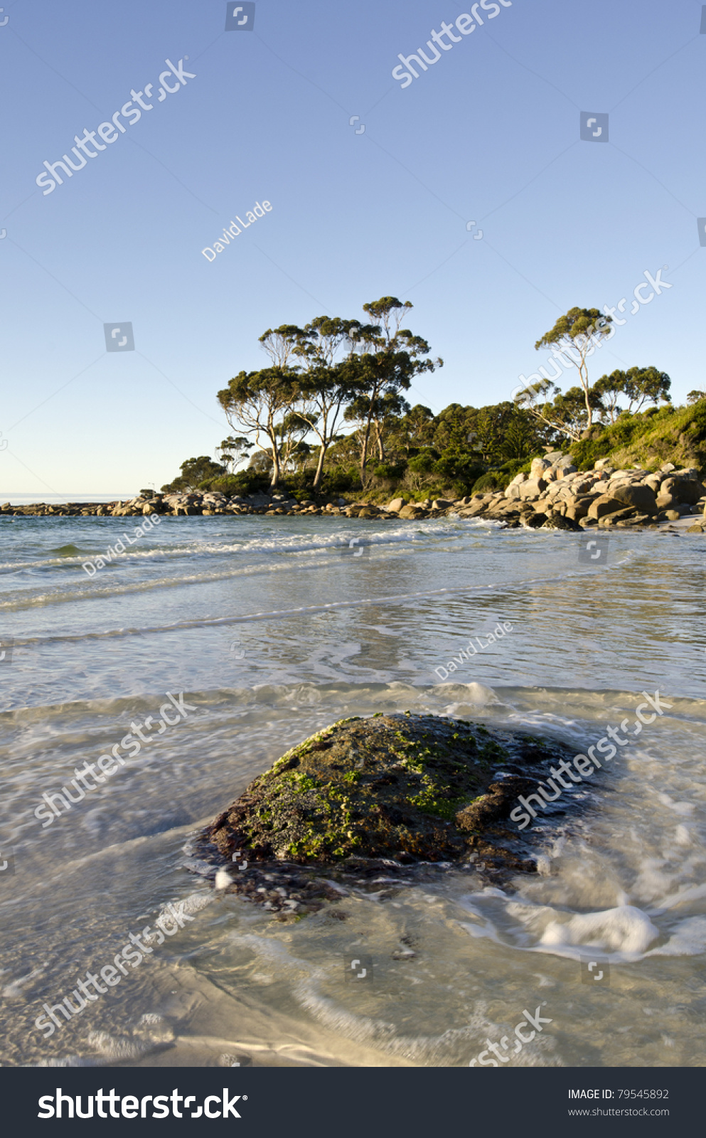 Bay of fires late light landscape with seaweed encrusted for Landscaping rocks tasmania
