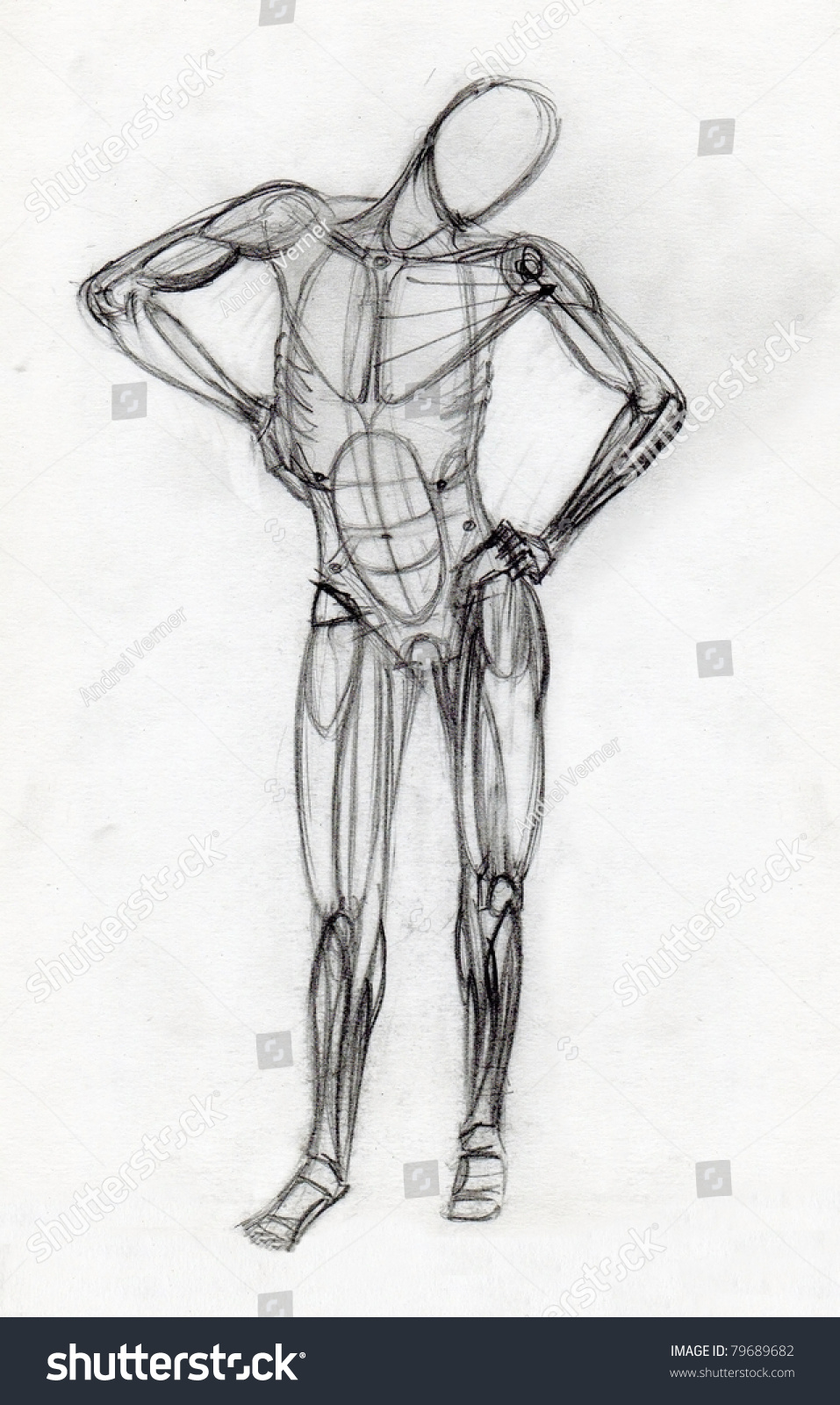 Human muscle figure traditional pencil drawing
