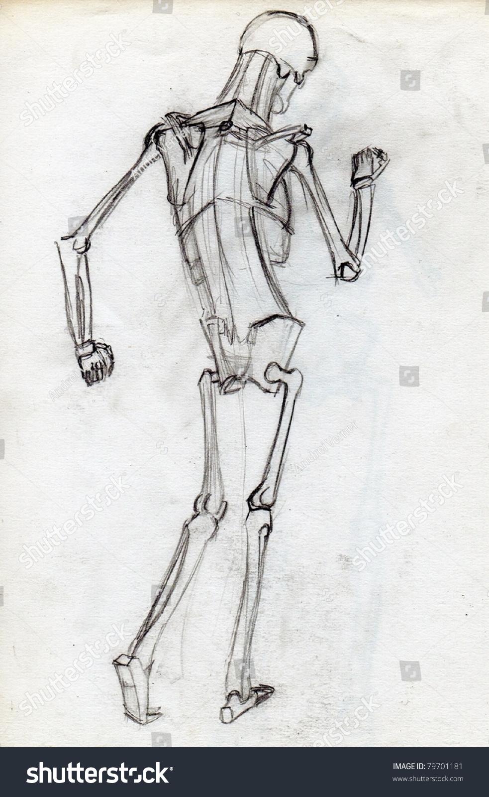 Human Skeleton Pencil Hand Drawing Stock Illustration 79701181