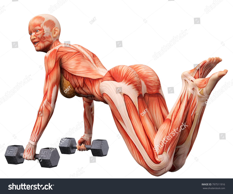 Muscle Woman Doing Push Legs Crossed Stock Illustration 797511916 ...