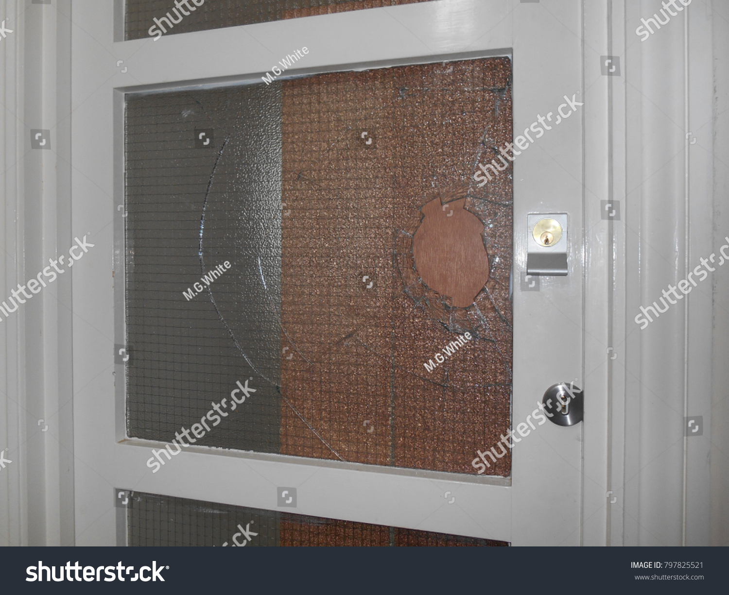 Charming Wire Reinforced Glass For Doors Images - Electrical ...