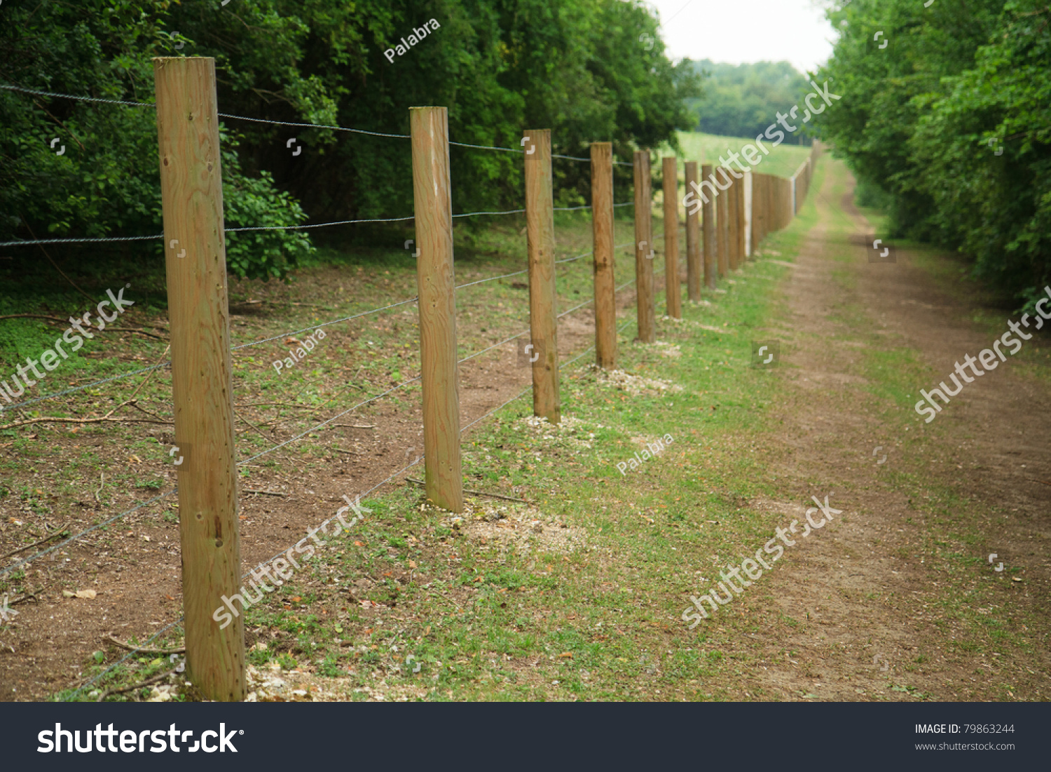 Long fence wooden posts wire stock photo