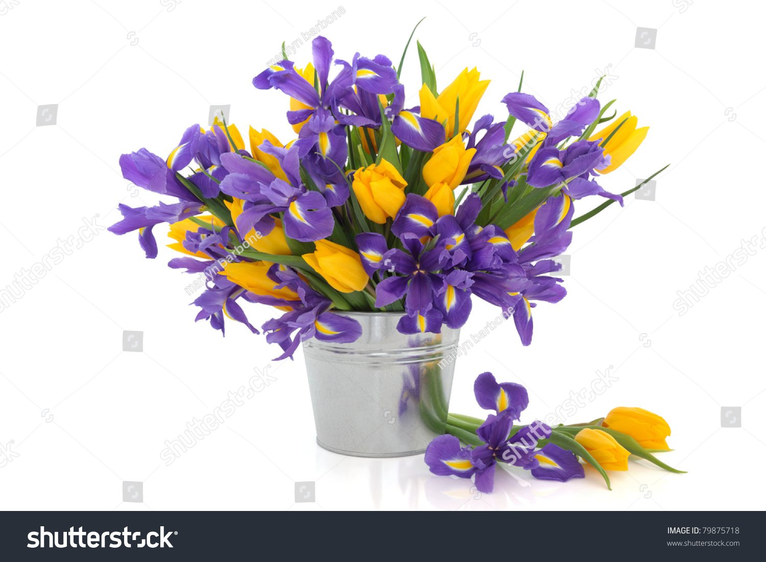 Purple Iris And Yellow Tulip Flower Arrangement In A Distressed