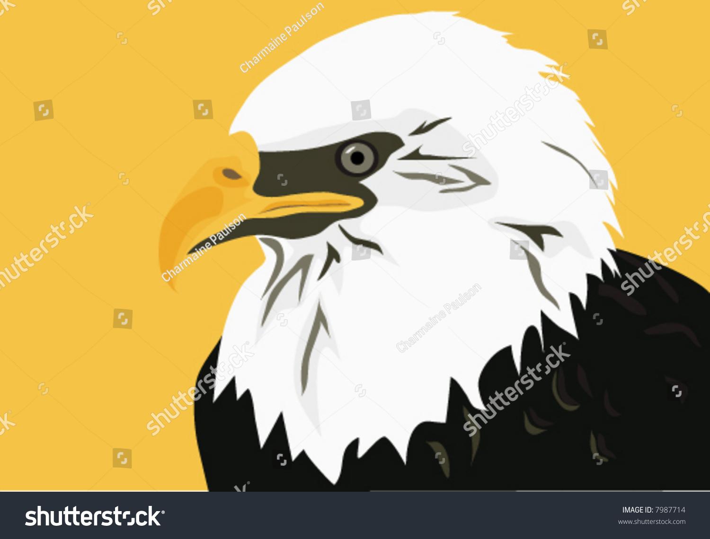 Americas National Bird Bald Eagle Symbol Stock Vector Royalty Free