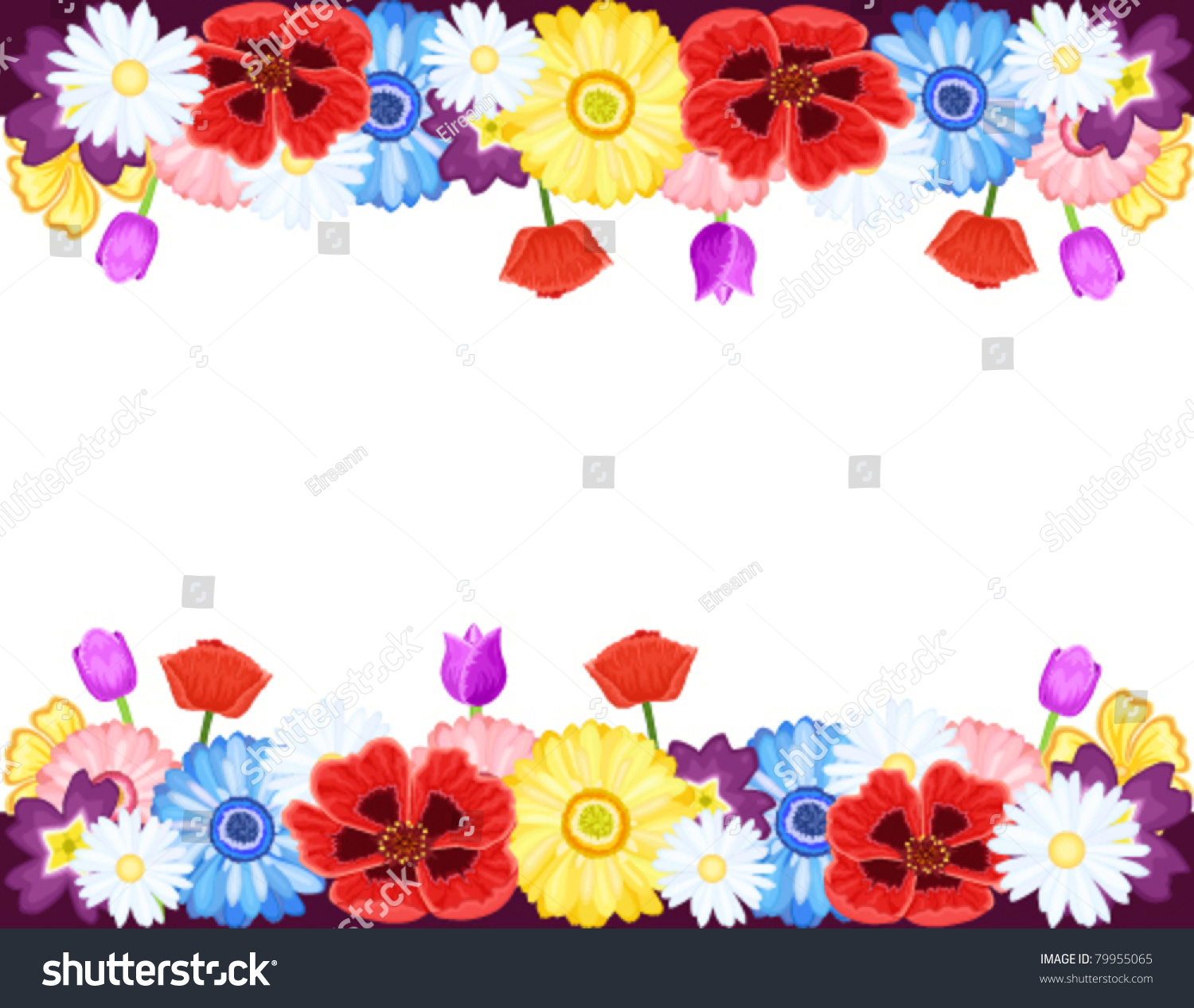 Beautiful Flowers Borders Spring Summer Isolated Stock Vector