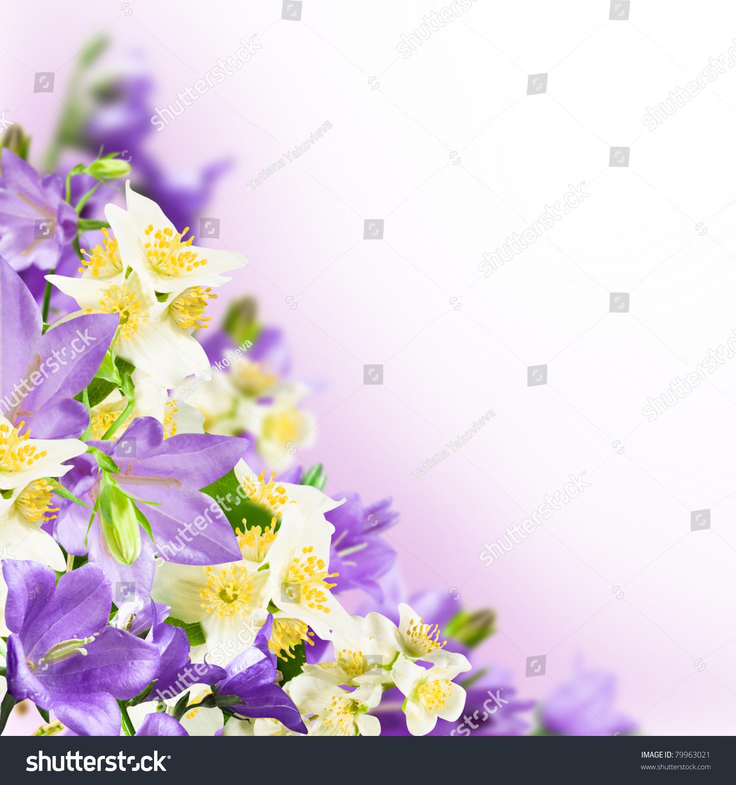 Flowers blue campanulas and white jasmine on pink white background id 79963021 izmirmasajfo