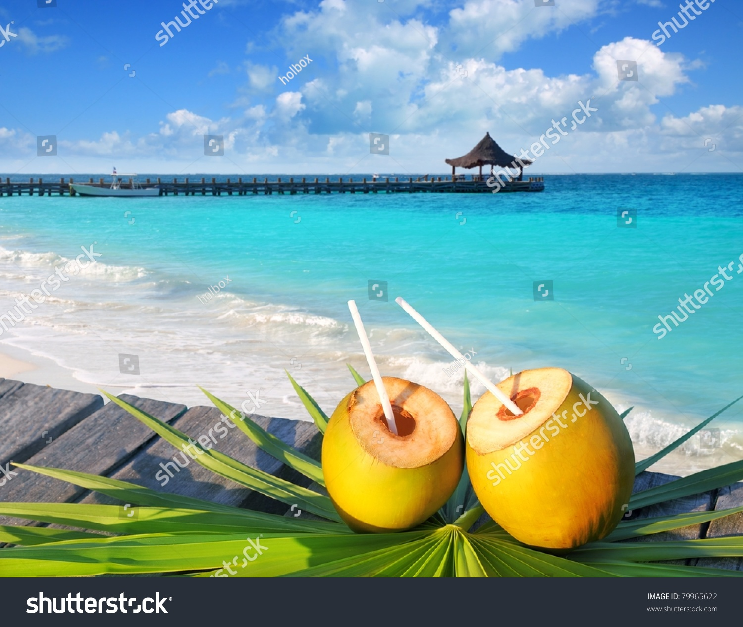 Coconuts Cocktail On Palm Tree Leaf Stock Photo 79965622 ...