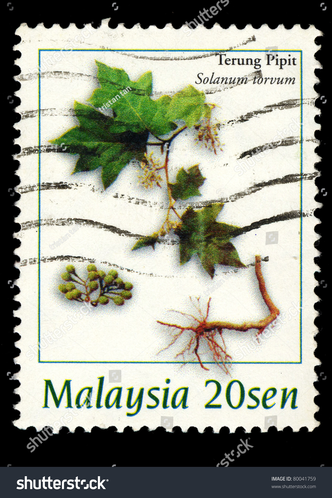 1998 in Malaysia