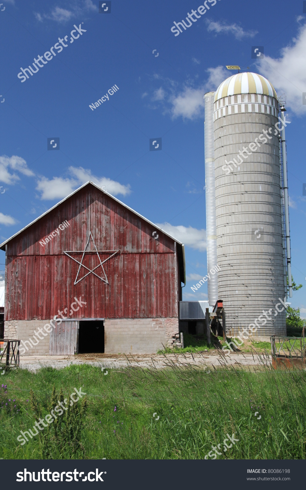 Cow on green pasture with red barn with grain silo royalty free stock - Old Red Barn With Silo