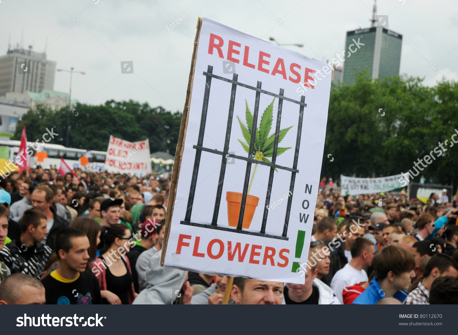 legalization of soft drugs Extracts from this document introduction why soft drugs should be legalised there are two ways to try and sort out the drugs problem one is to legalise and regulate the supply, and the other is to leave it in the hands of criminals.
