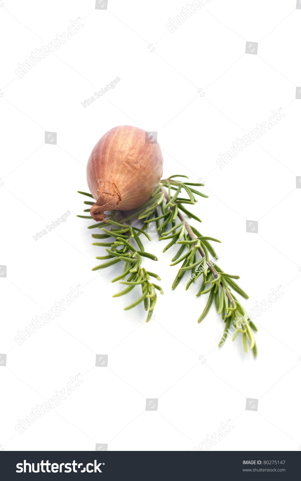 Summer Vegetables : Onion And Rosemary Isolated On White ...