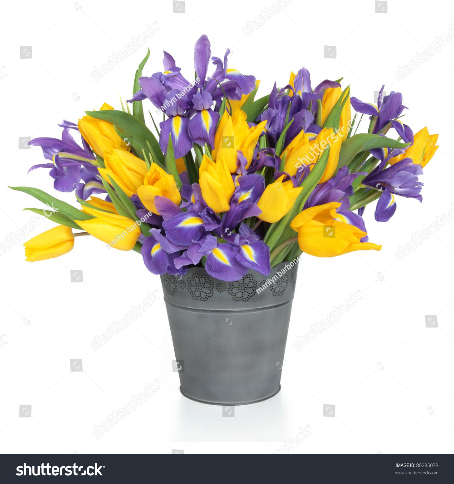 Purple Iris Yellow Tulip Flower Arrangement Stock Royalty