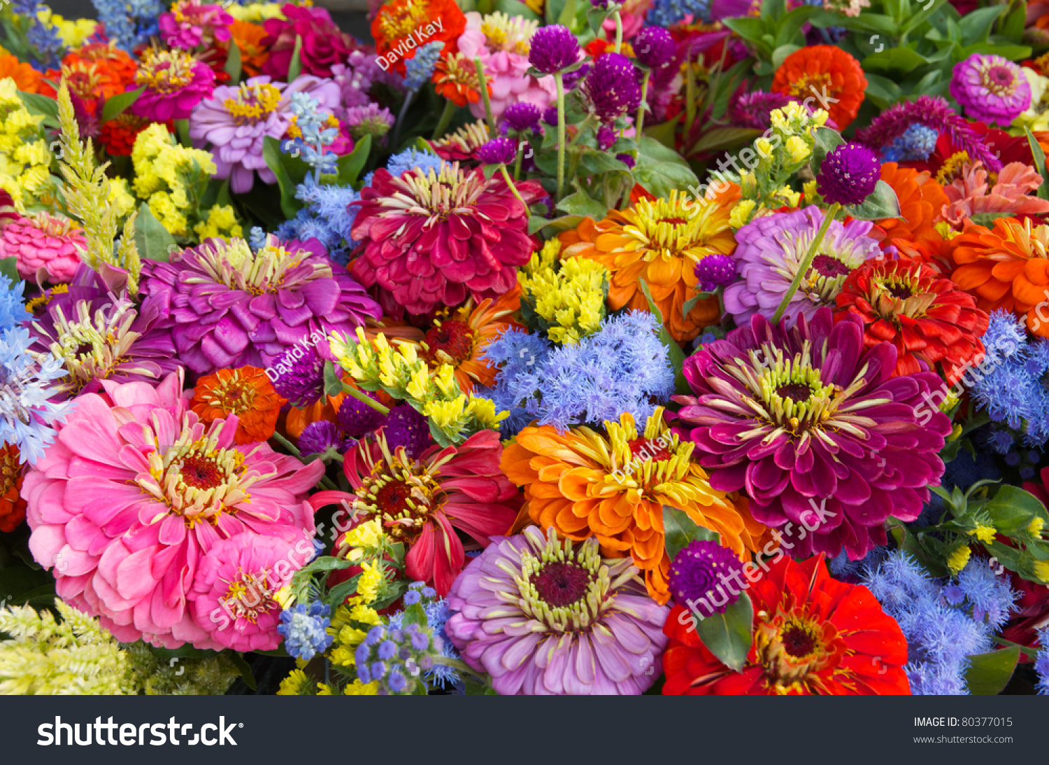 Fresh Summer Flower Bouquet Farm Market Stock Photo (Safe to Use ...