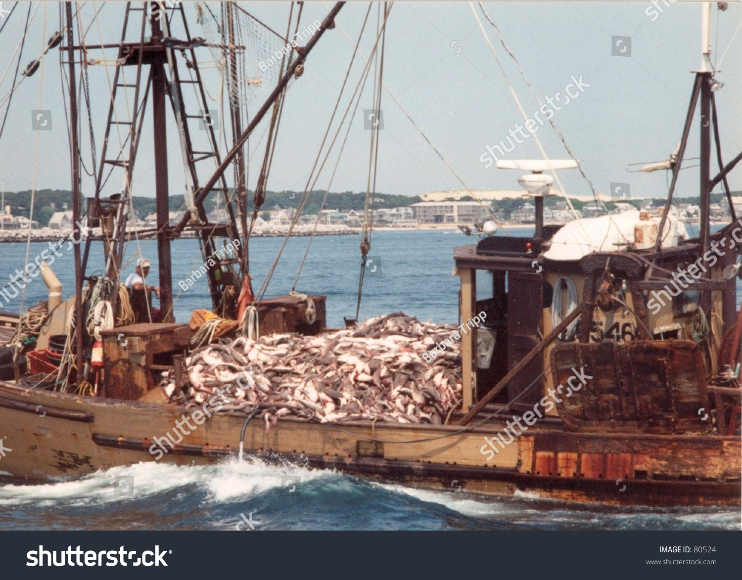 Commercial fishing boat cape cod stock photo 80524 for What is commercial fishing