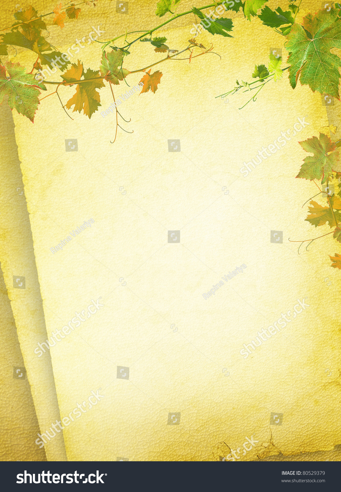 wine list menu grapes green leafs stock illustration 80529379