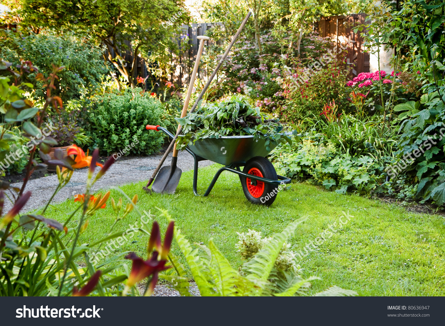 Evening After Work In Summer Garden With Wheelbarrow