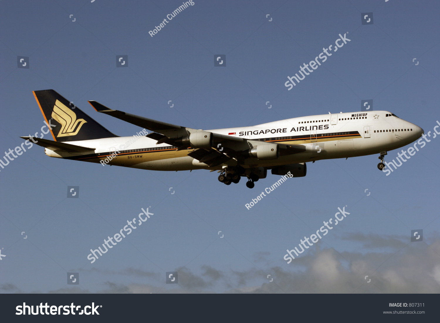 Singapore airlines stock options