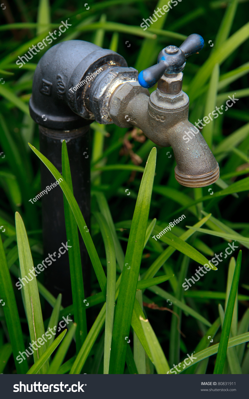 an outdoor water faucet used to attach a hose to for outdoor watering needs stock photo 80831911. Black Bedroom Furniture Sets. Home Design Ideas