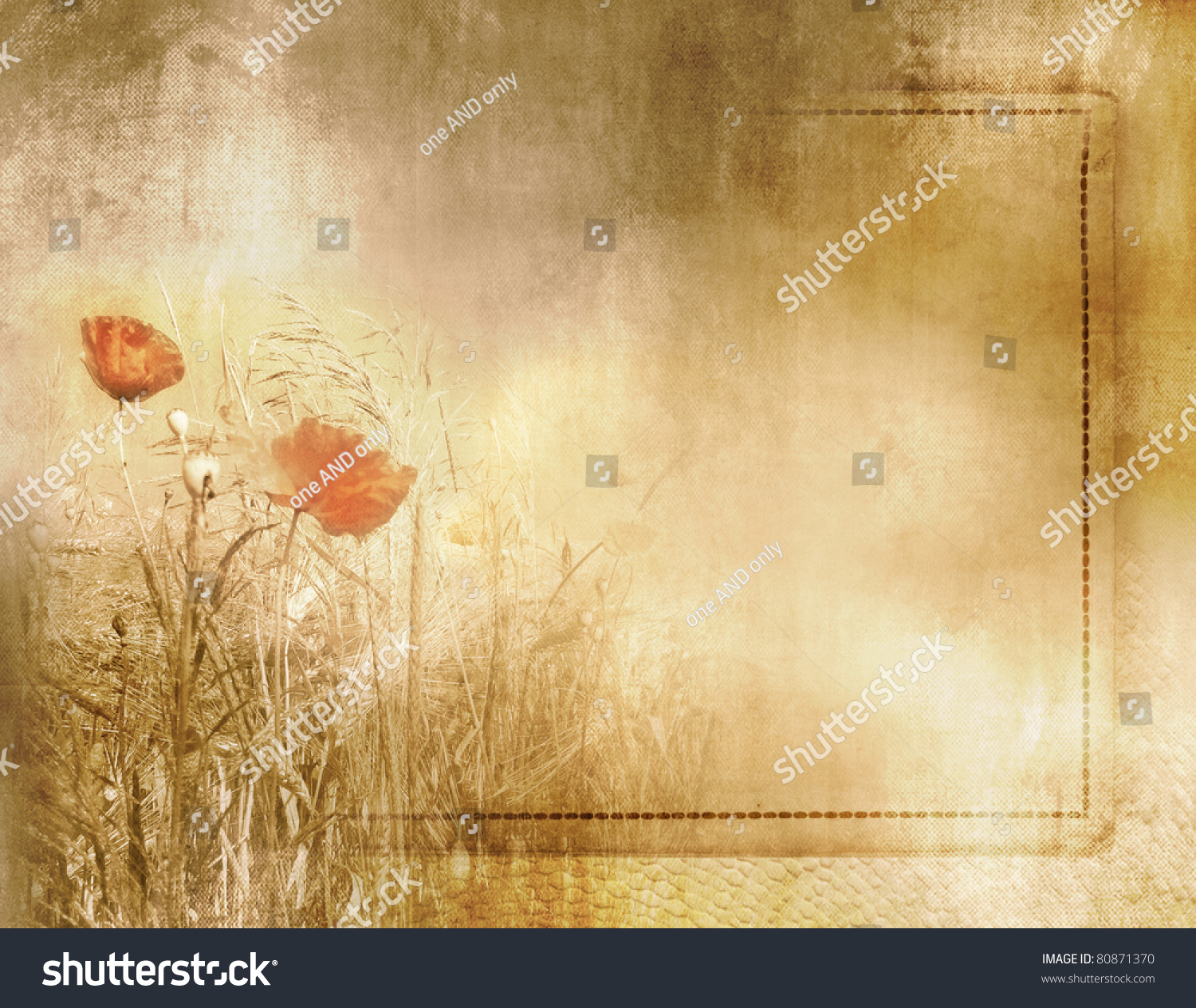 vintage poppy field background on old paper texture with