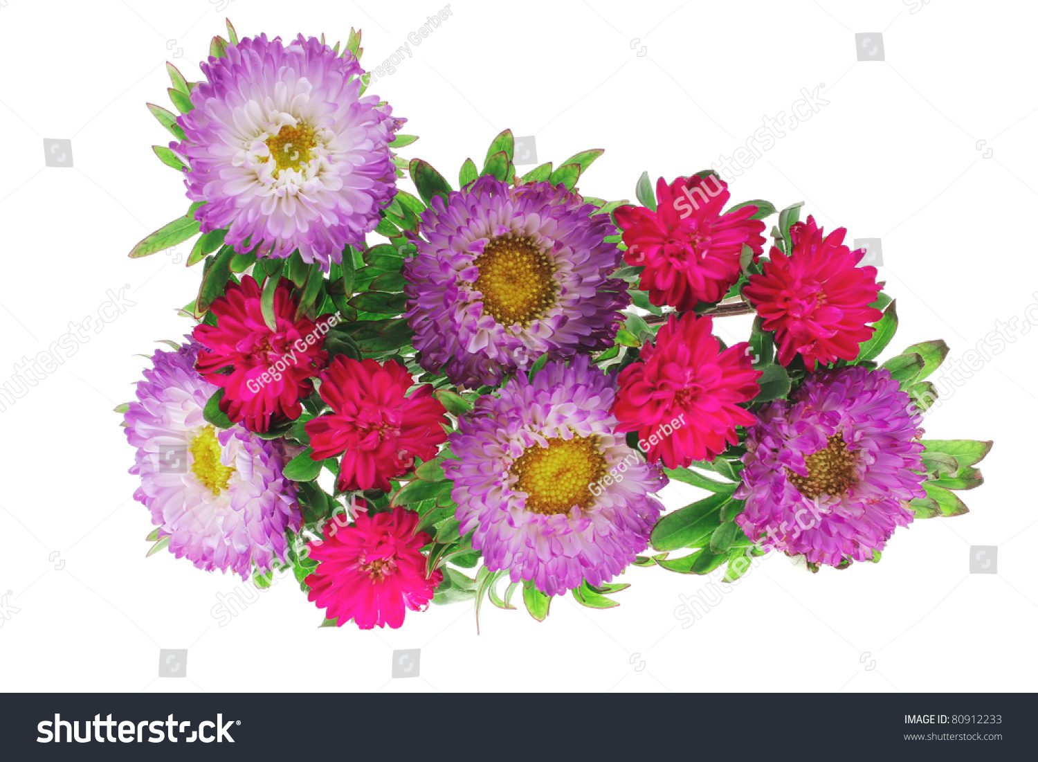 Bouquet of colorful Asters flowers over white background | EZ Canvas