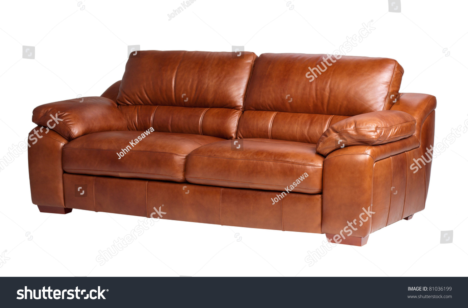Nice And Luxury Leather Sofa The Great Leather Furniture