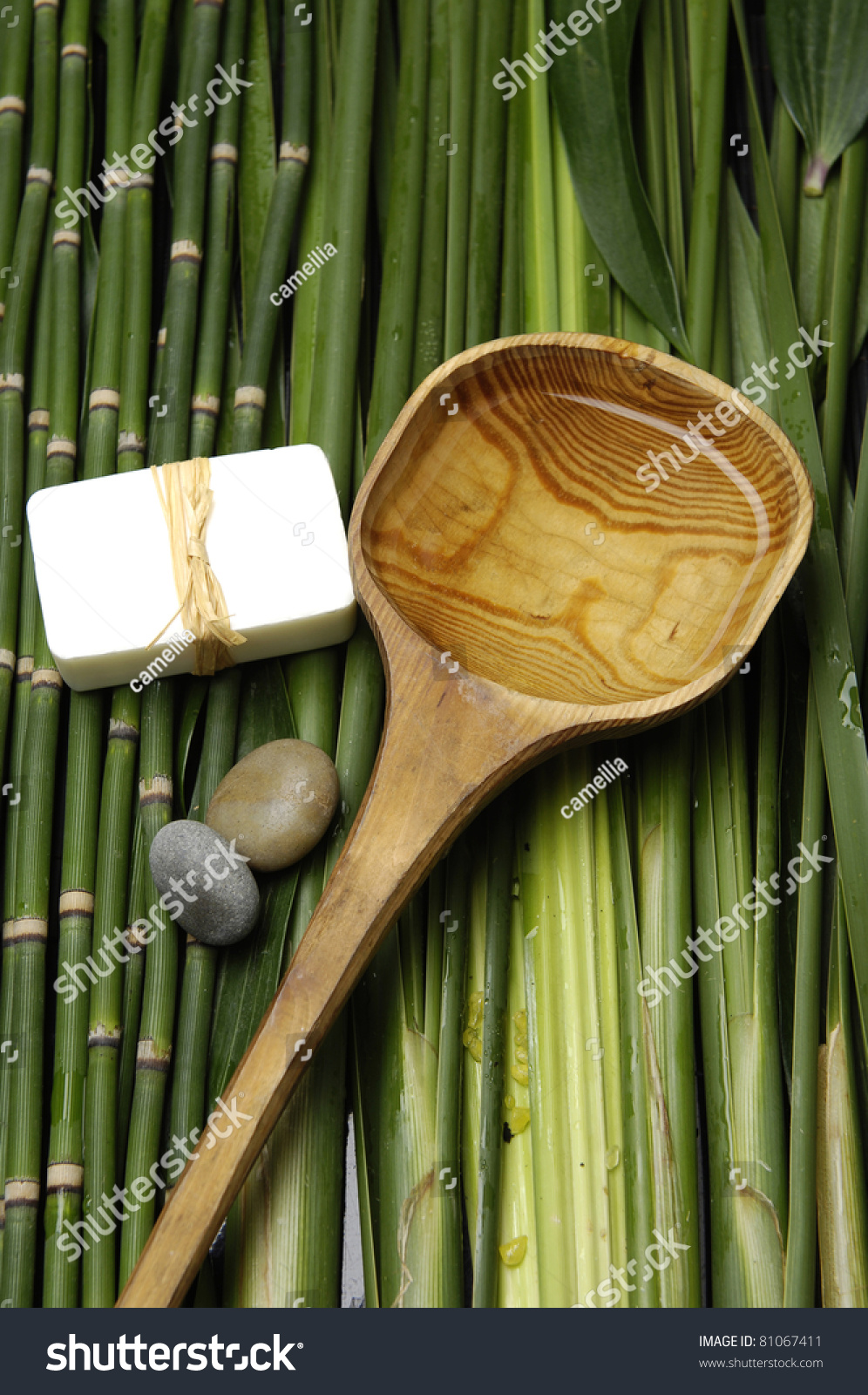 Wooden Spoon And Bath Soap And Stones With On Green Plant