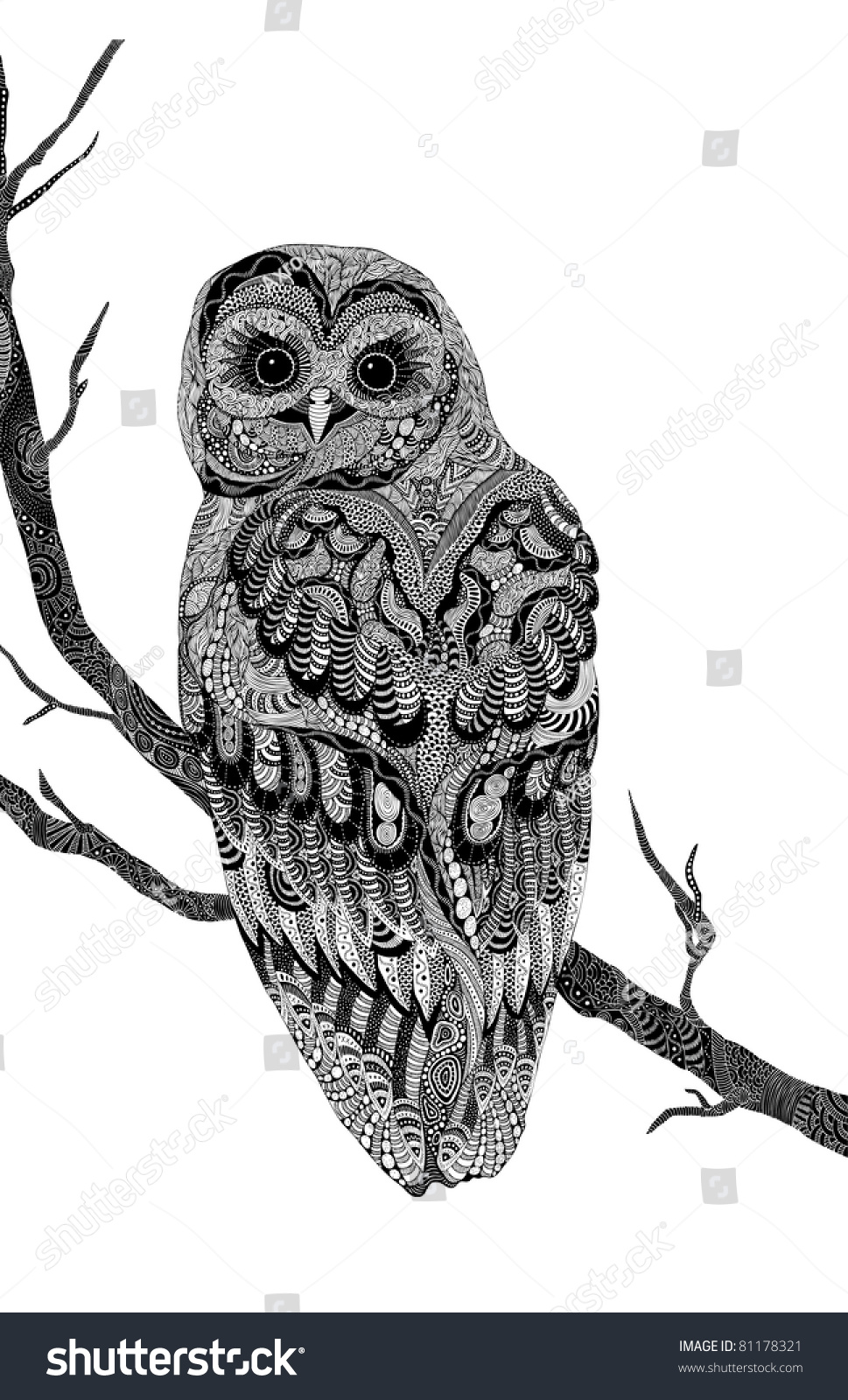 Very Detailed Handdrawn Psychedelic Owl Branch Stock ...