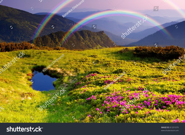 summer landscape mountains flowers rainbow lake stock photo