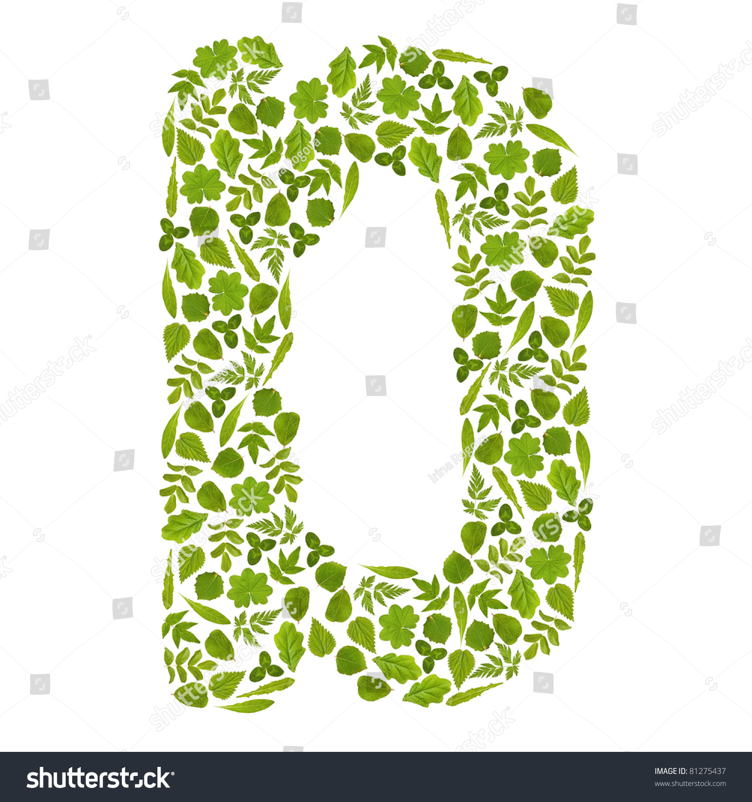 Letter D Green Leafs Stock Photo 81275437 - Shutterstock
