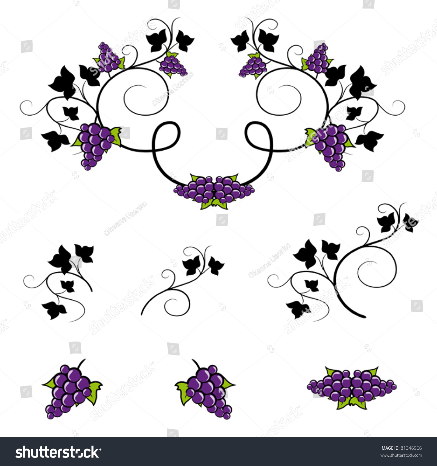 set of wine frames and design elements grape decorative ornaments