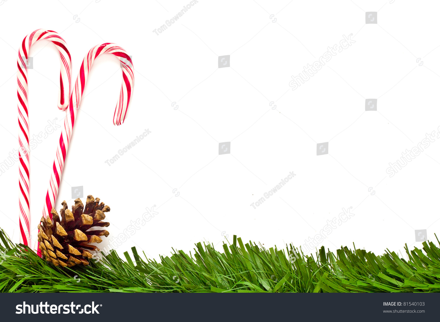 Christmas template with candy canes pine cone and green - Caramelos de navidad ...