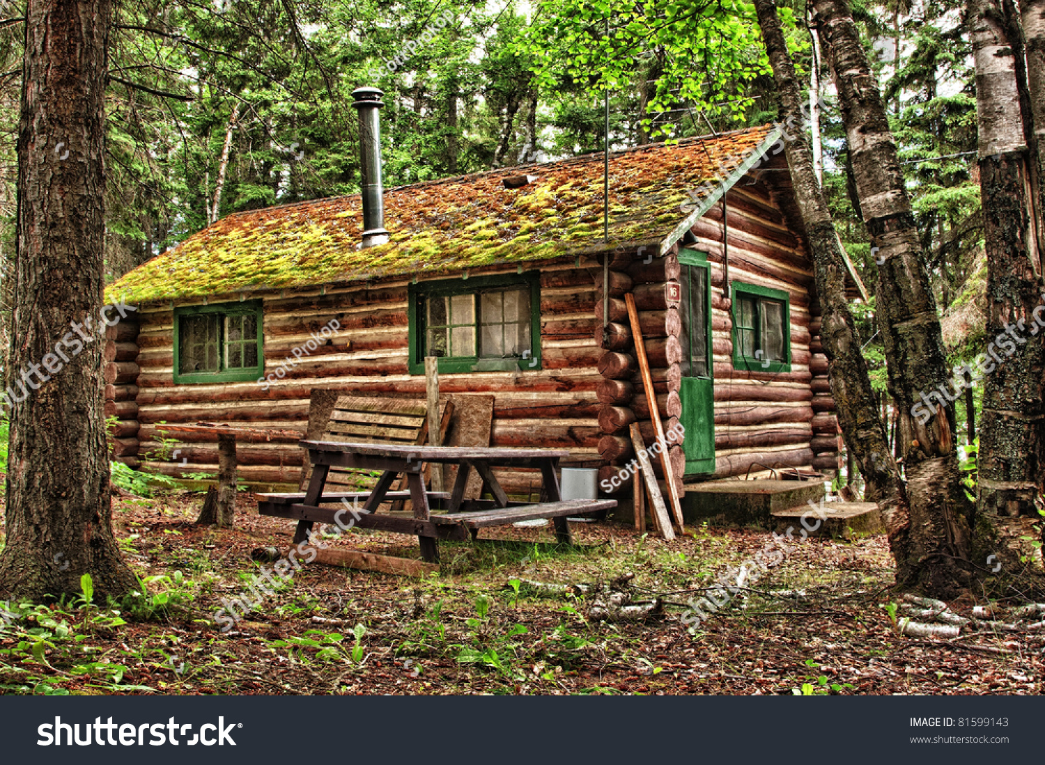 Log Cabin Surrounded By Forest Duck Stock Photo 81599143