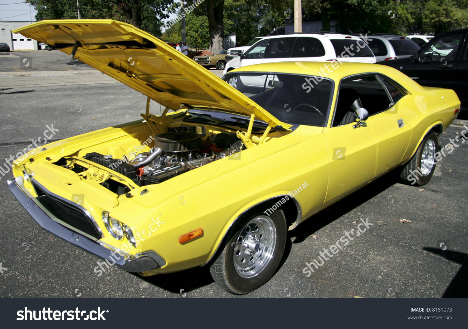 Beautifully Restored Old Cars On Display Stock Photo 8181073 ...