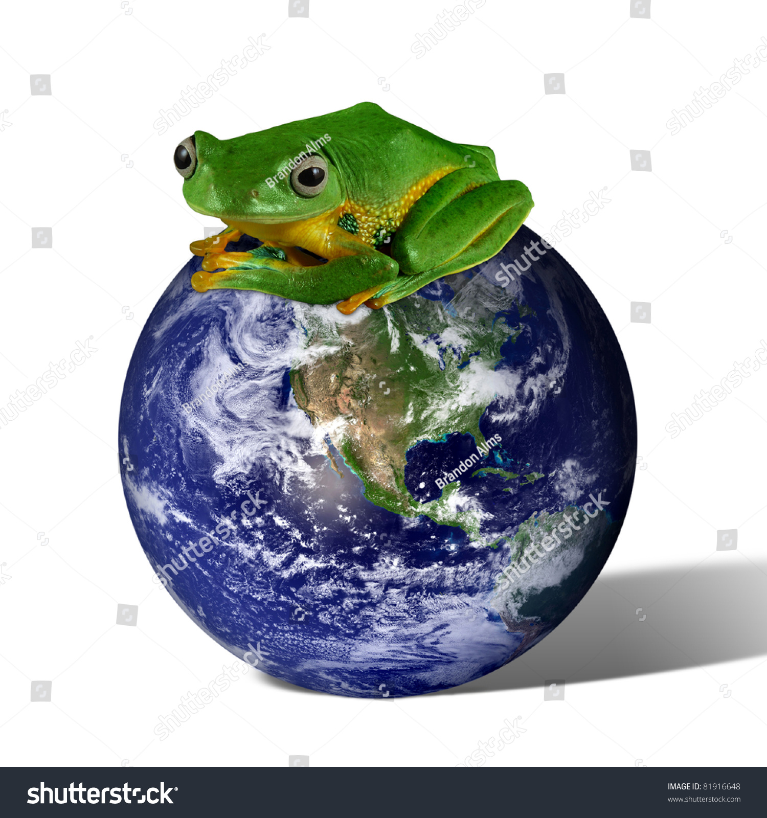 Frog On The Earth Map Source: Http://Www.Visibleearth.Nasa ...